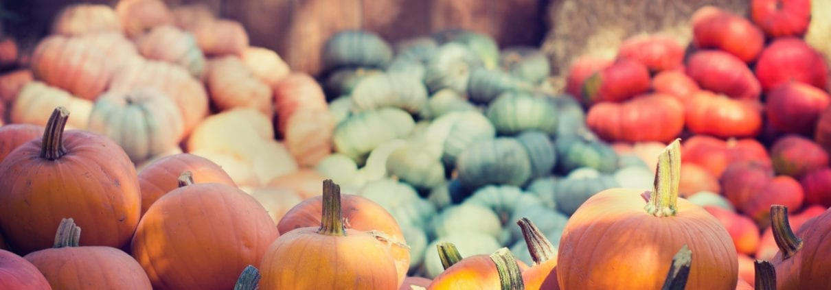 fall events in the High Country