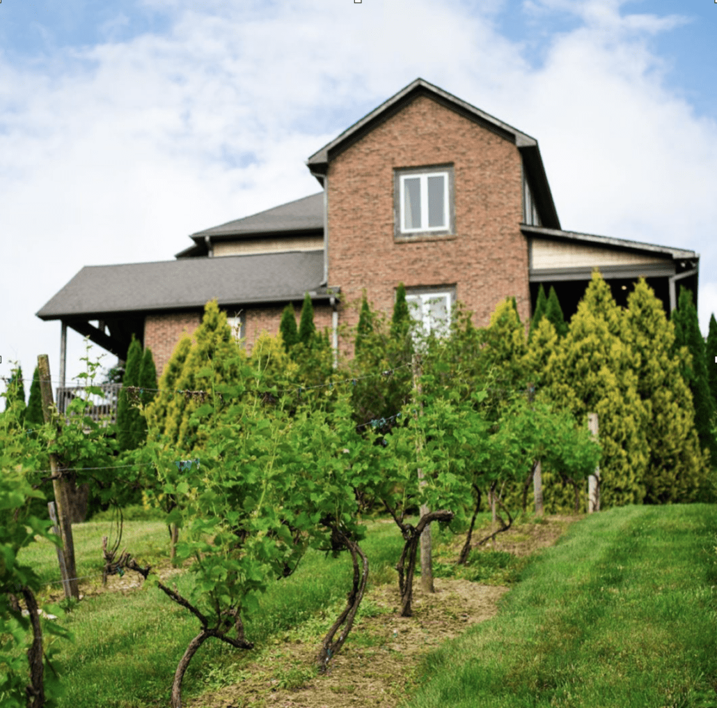 Bachelorette party villa at Banner Elk Winery